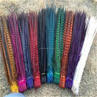 PM-013 wholesale Customize colors natural pheasant feathers