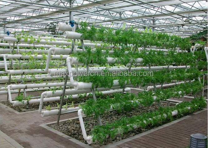 how to build a vertical hydroponic system