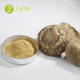 OEM Herbal Plant Extract Powder Champignon Shiitake Mushroom