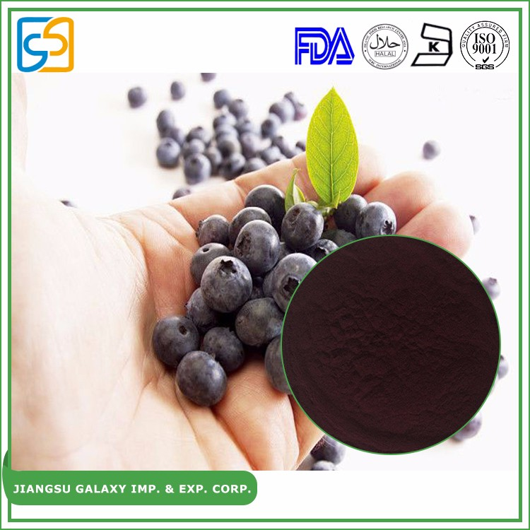 Natural fruit extract 25% anthocyanidins powder dry bilberry extract