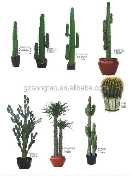 Hot Large Indoor Artificial Green Cactus Plant For Decoration Plants