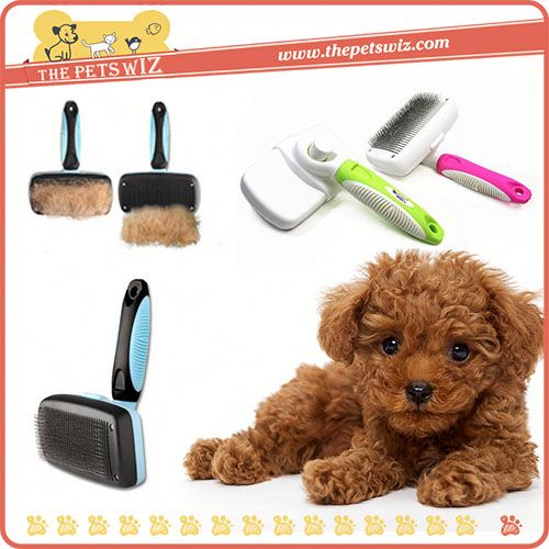 Latest dog brush ,CC117 different types of dog brushes for sale
