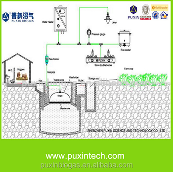 Home Biogas Digester With Biogas Plant And Biogas Generator Price ...