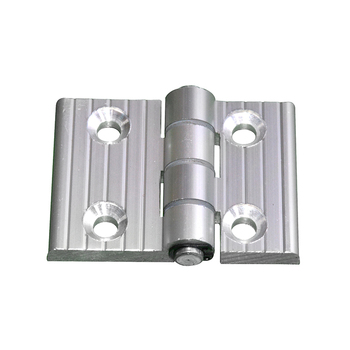 Stainless Steel Pivot 180 Degree Door Hinges