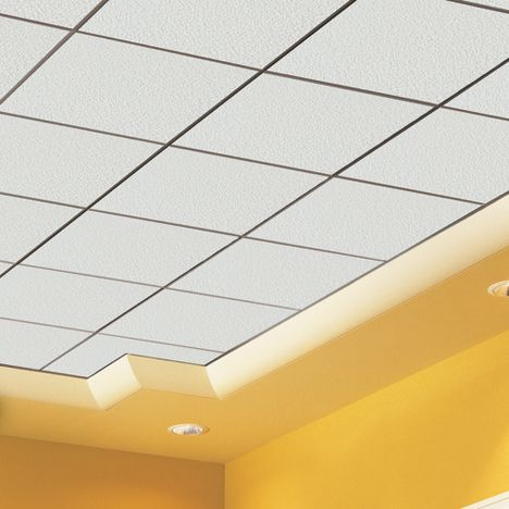 Cute 12 Ceiling Tiles Thin 12 Inch Floor Tiles Rectangular 16 Ceramic Tile 18X18 Ceramic Floor Tile Young 18X18 Ceramic Tile Red2 X 4 Ceiling Tiles Groove Ceiling T Grid Ceiling Suspension System   Buy Groove ..