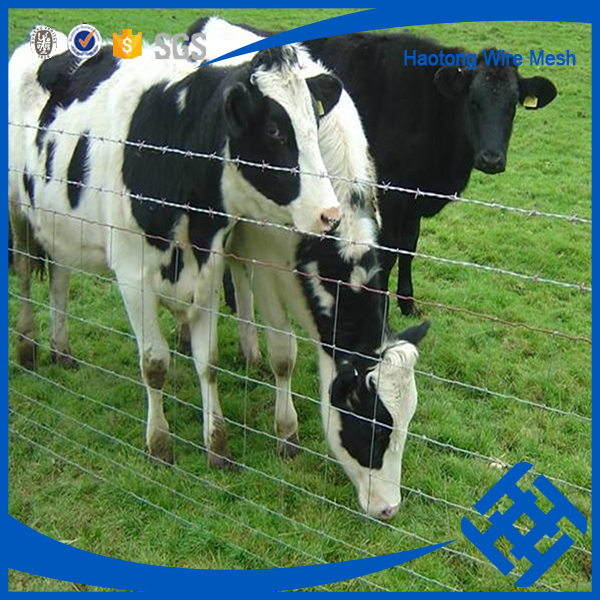 Hinge joint knot field fence for animals made in China
