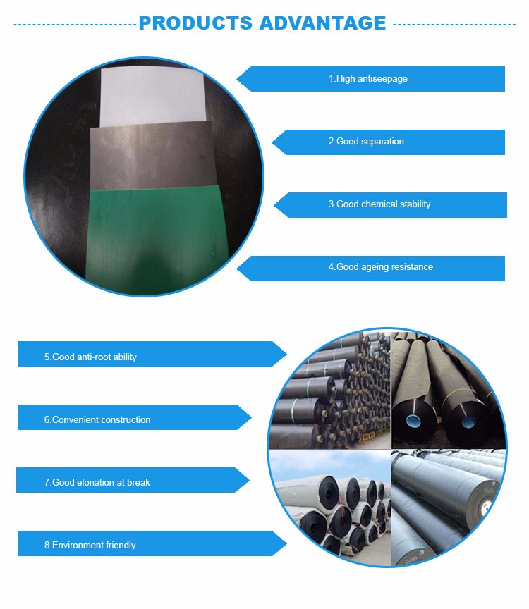 Geomembrane type HDPE geomembrane with cheap price made by China supplier