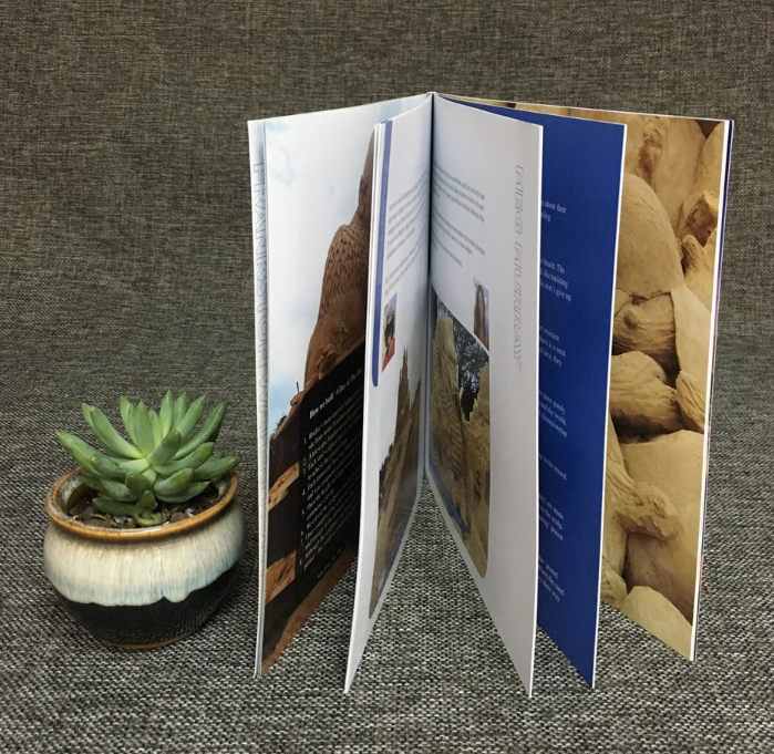 Perfect binding book printing with film lamination from best print