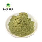 moringa leaf extract powder capsules moringa seed extract MORINGA POWDER EXTRACT