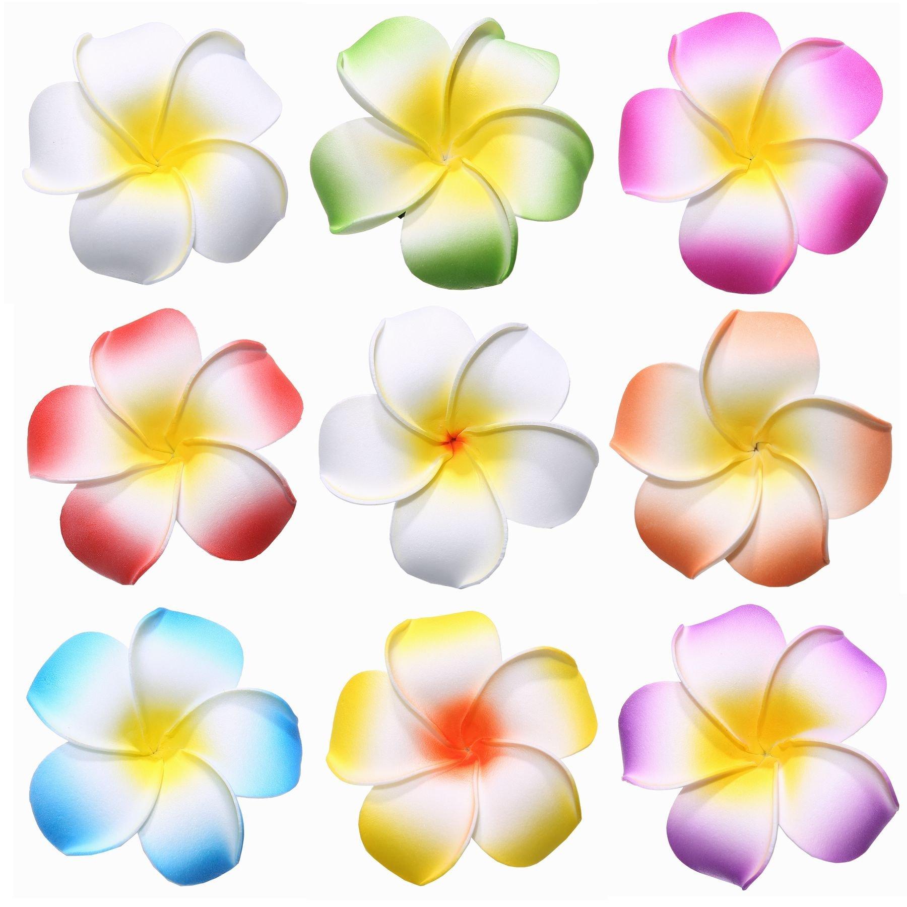 Buy youbami 35 hawaiian plumeria foam flower hair clip accessory youbami 35 hawaiian plumeria foam flower hair clip accessory set of izmirmasajfo