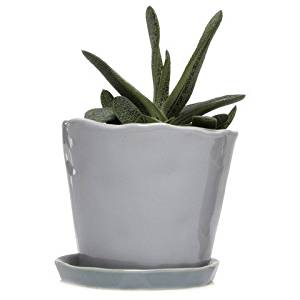 """Chive - Big Tika Succulent Planter - 5"""" Ceramic Plant Pot with Drainage Hole and Saucer, Light Grey"""