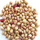 High quality LSKB light kidney bean,dry pinto bean