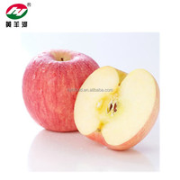 Fresh fruits red fuji apple in China with best price and high quality