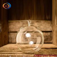 Hanging Glass Globe Terrarium for Air Plant vase