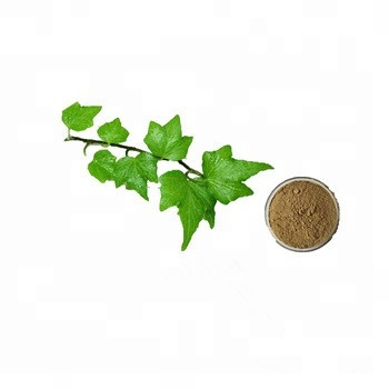 Buy Natural Hedera Helix (ivy) Extract For Cellulite From Muziagri - Buy  Ivy Leaf Extract,Ivy Extract For Cellulite,Hedera Helix (ivy) Extract  Product