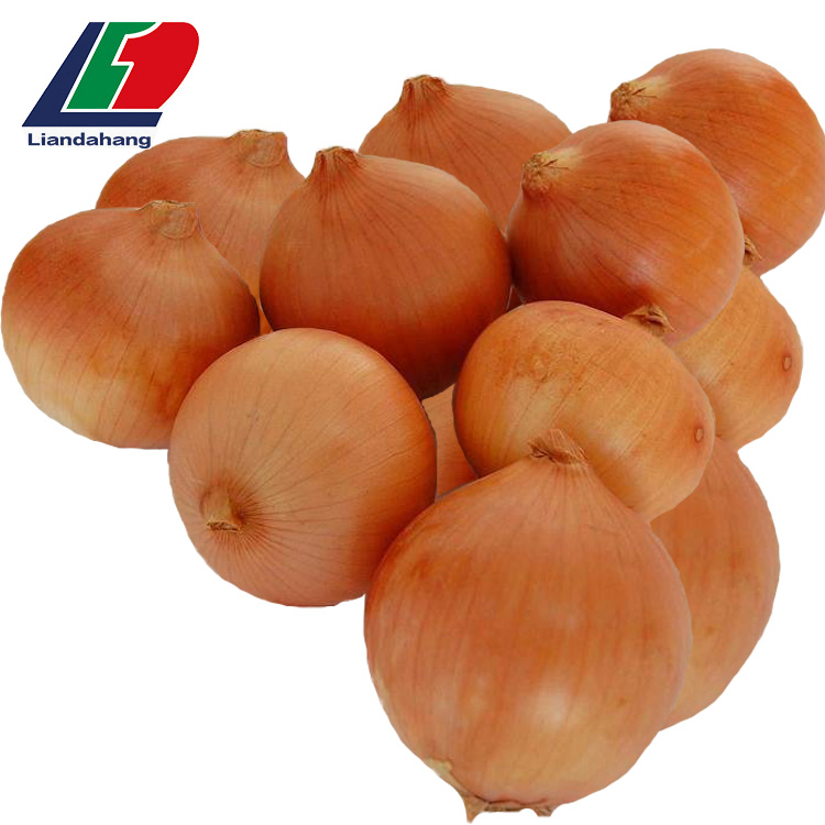 New Crop Yellow Red White Onion Spices Wholesale, Onion Slice, Red Onion Wholesale Price