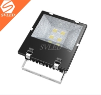 Shenzhen Best selling 150w led flood light with Epistar COB IP65