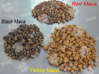 Grupo SAUKI Bolivia - Dehydrated Maca Bulb