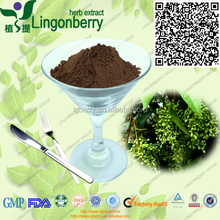 Natural and pure 4:1, 10:1 and 20:1 neem extract powder