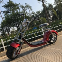new style fashion travel electric scooter with luggage trolley bag