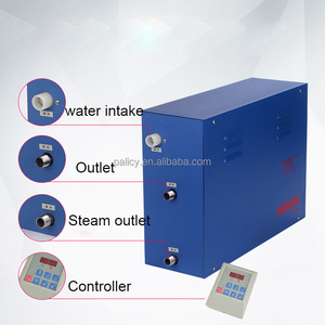 SS Main Material and Computer Control Panel Feature Portable Wet Steam Room Generators