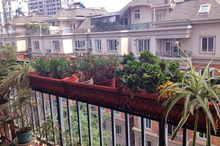 Popular Balcony Railing Planters from China best-selling