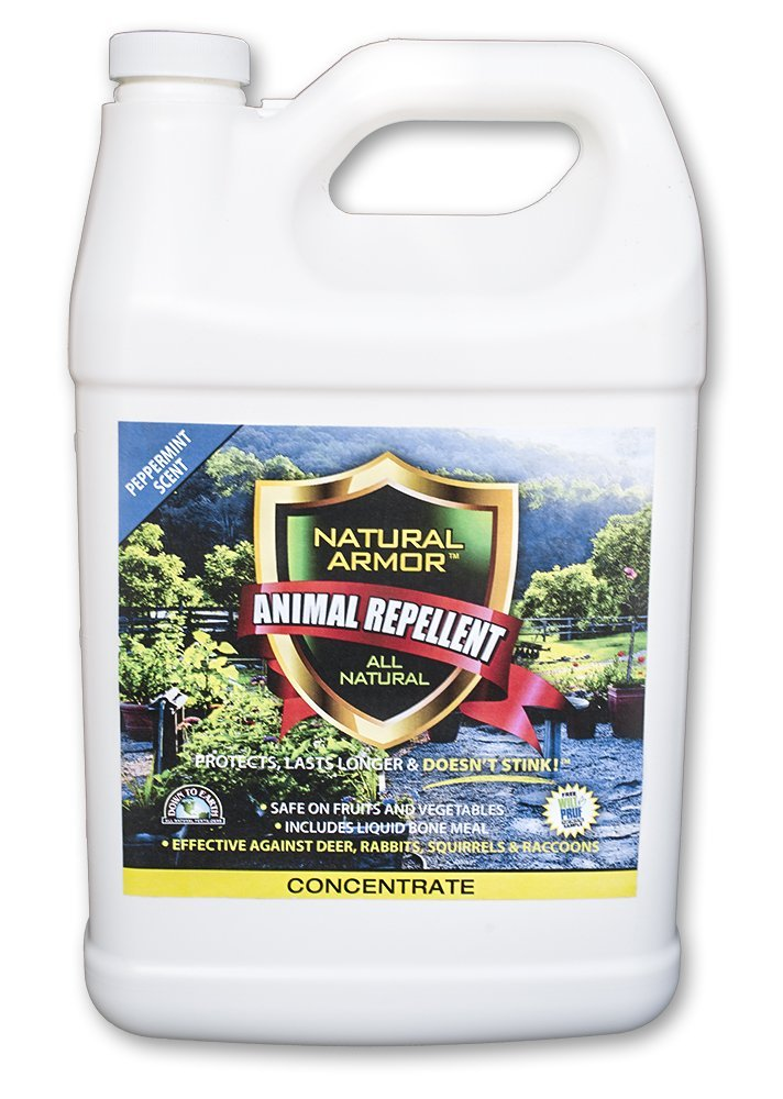 Repellent Spray for Rodents & Animals. Cats, Rats, Squirrels, Mouse & Deer. Repeller & Deterrent for Dogs, Critters, Mice, Raccoon & Skunk. Natural Armor Peppermint Gallon Concentrate