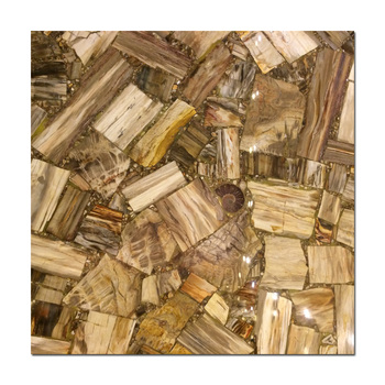 Marble furniture Petrified wood/Petrified wood slab tile/Fossil stone for sale