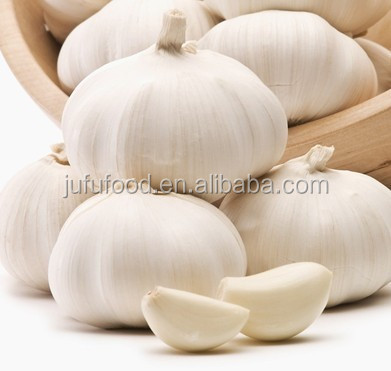 sunny garlic from china