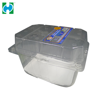 Disposable Clear Pet Food Container Plastic Fruit Packaging Clamshell Container With Lid