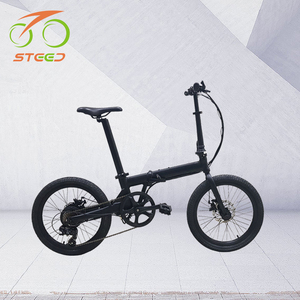 20inch mini 250W Cheap Small Folding ebike