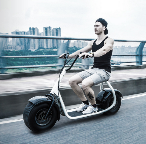 New model 2 wheel fat tire electric scooter with samsung battery 1000w high quality best promote gift