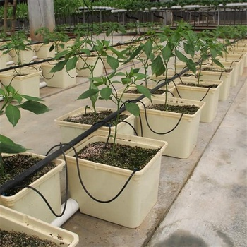 Agricultural hydroponics system plastic Dutch bato bucket for sale