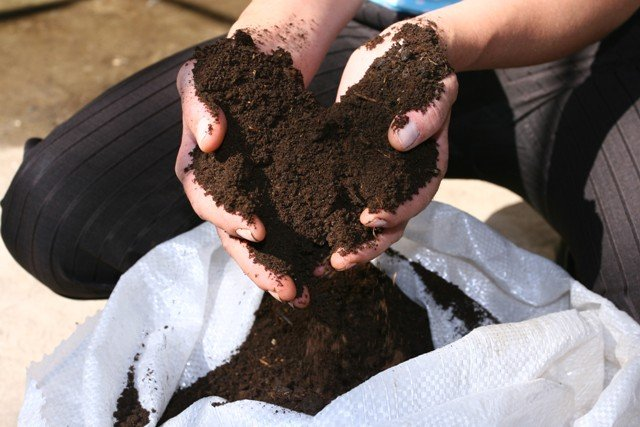 Certified organic fertilizer / biohumus / vermicompost made from cow manure by using California worms / Eisenia Fetida