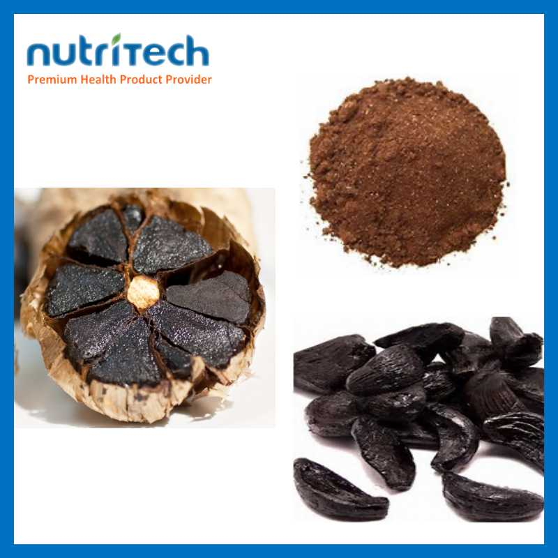 GMP Manufacturer Organic Black Garlic Extract Price