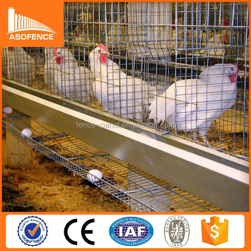 ISO 9001 chicken breeding cage