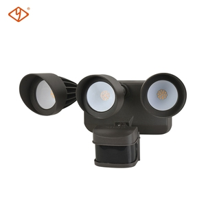 Hot Selling Aluminum- Plastic Factory Price 12V Led Motion Security Lights Outdoor