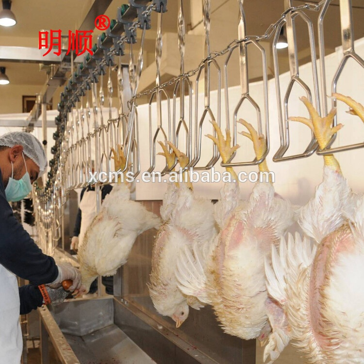 Miraculous 2019 New Halal Poultry Processing Line Poultry Abattoir Of 500 5000Bph Slaughterhouse Equipment Buy Slaughter House Equipment Poultry Processing Download Free Architecture Designs Rallybritishbridgeorg