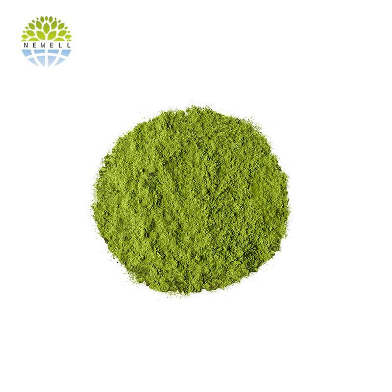 Chinese wholesale health green tea powder in stock - 4uTea | 4uTea.com