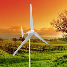 1KW For Home Use or Factory FRP Blades Small Eolic Windmill Horizontal Axis Wind Turbine Generator