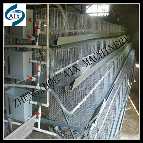 Highly recommended egg chicken cage for chicken feeding