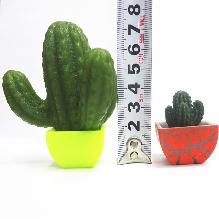 Home Office Growing Cactus Fashion Plants Garden 48pcs Cactus Plants