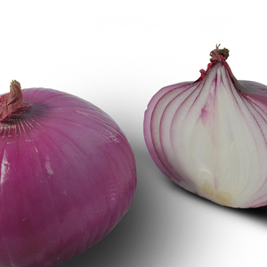 Chinese Wholesale Fresh Bellary Fresh Onion Prices In India