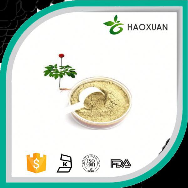 low price for ginseng panax extract ginsenoside rg3