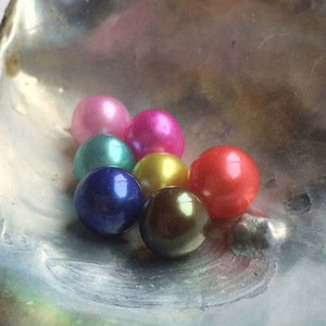 Multi color akoya pearl oyster saltwater 7-8mm