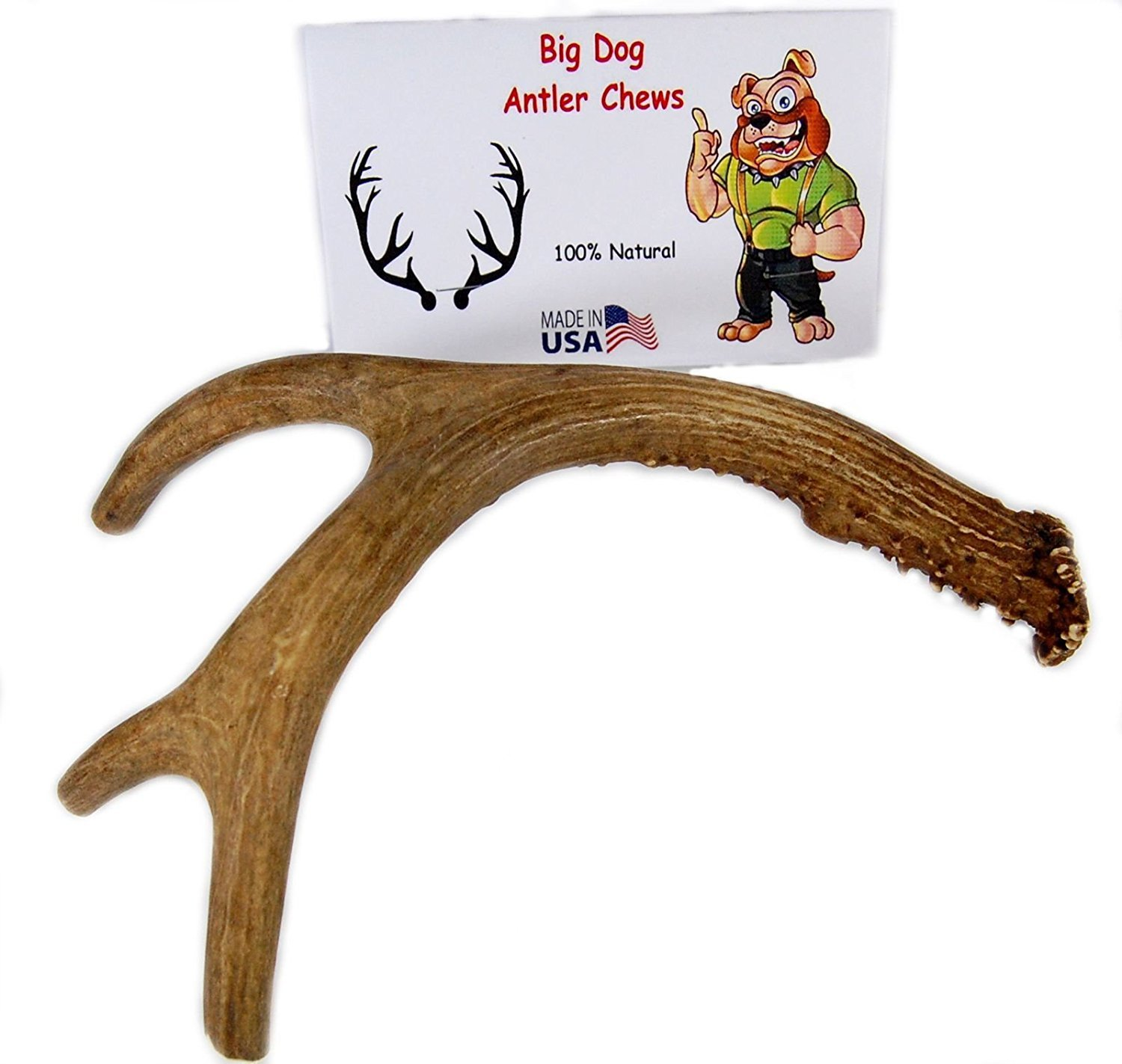 Big Dog Antler Chews - Deer Antler Dog Chew, Medium, 9 Inches to 13 Inches Long. Perfect for your Medium to Large Size Dogs and Puppies! Grade A Premium. Happy Dog Guarantee!