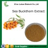 Antimicrobial herbal powder Sea buckthorn extract supplier from shaanxi