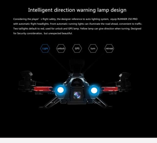 Original Walkera Runner 250 PRO GPS RC Quadcopter with DEVO 7 / 800TVL Cams / OSD