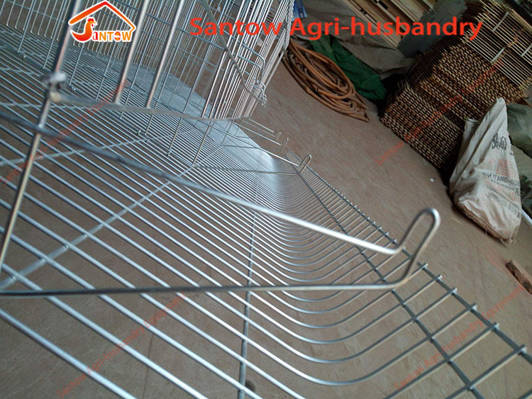 Hot Galvanized Chicken Cage Price Automatic Chicken Feeding System In Nigeria Africa Philippines Poultry Chicken Layer Farm