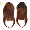 New Design Can Be Customized Hair Piece, Good Quality Clip In Hair Bang, 100% Human Hair Fringe